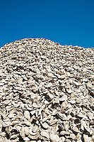 Shellpile, New Jersey, NJ,