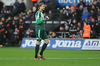 Tim Krul of Norwich City celebrates the opening goal during the Sky Bet Championship match between Swansea City and Norwich City at the Liberty Stadium, Swansea, Wales, UK. Saturday 24 November 2018