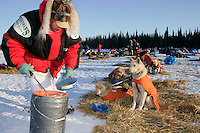 Tuesday March 6, 2007   Ray Redington Jr. feeds his lead dogs shortly after arriving at the Nikolai checkpoint on Tuesday