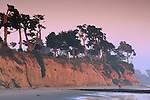 Evening light over coastal cypress trees and cliff along Butterfly Beach, Santa Barbara, California