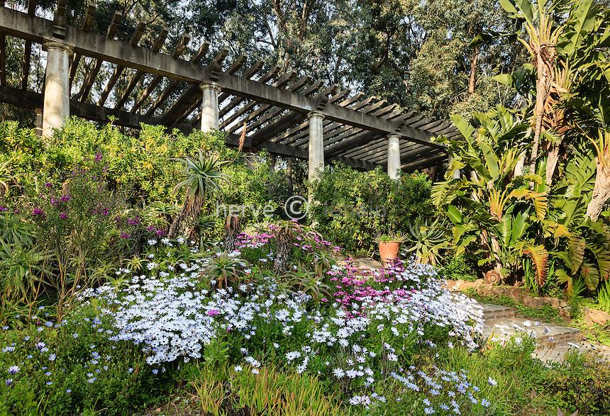 Le Domaine du Rayol:<br /> la pergola et le jardin d'Afrique du Sud.