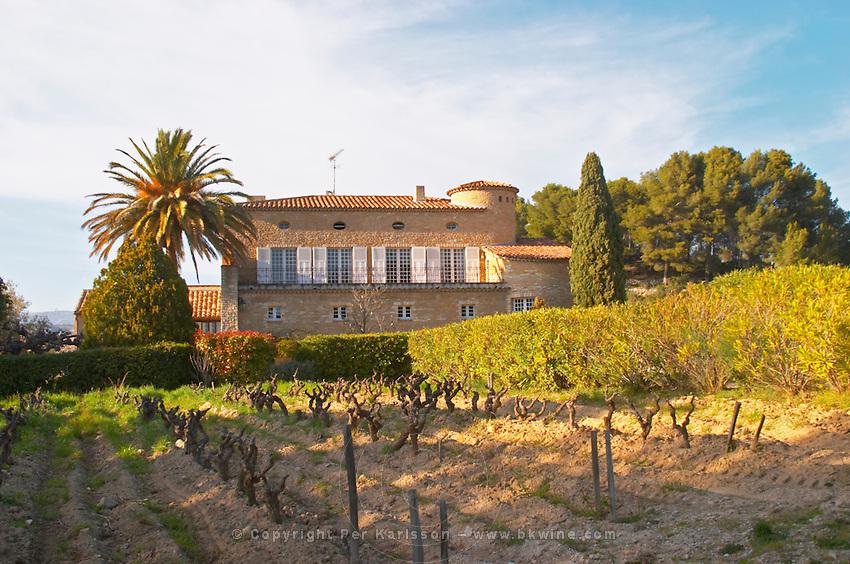 View over the vineyard in spring, vines in Cordon Royat training the main building Domaine de la Tour du Bon Le Castellet Bandol Var Cote d'Azur France