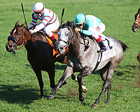 10-06-18 First Lady Stakes Keeneland