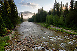 Idaho, North Central, Powell. Colt Killed Creek named during the Lewis and Clark expedition seen at sunrise in summer.