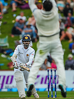 Brendon McCullum leaps to catch Lahiru Thirimanne during day one of the 2nd cricket test match between the New Zealand Black Caps and Sri Lanka at the Hawkins Basin Reserve, Wellington, New Zealand on Saturday, 3 February 2015. Photo: Dave Lintott / lintottphoto.co.nz