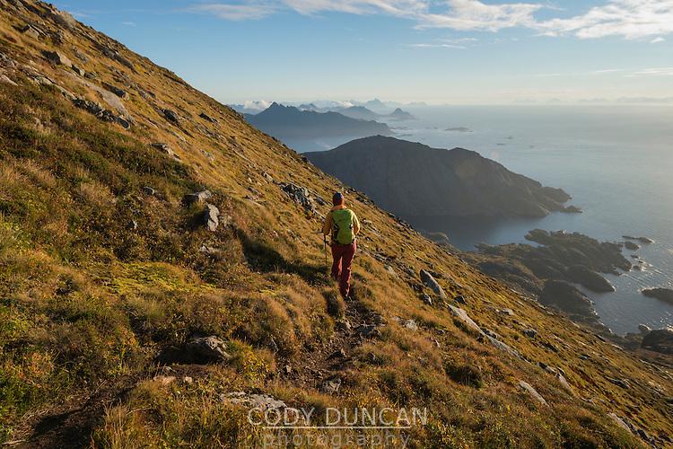 Female hiker descends hillside trail from Tønsåsheia, Lofoten Islands, Norway