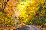 Country road with fall color