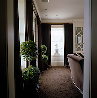 In this study deep brown velvet curtains and matching brown sofas create a luxurious yet warm and inviting feel; green bay trees in tubs add a touch of freshness