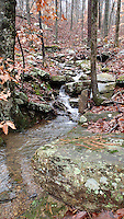NWA Democrat-Gazette file/FLIP PUTTHOFF<br /> A small creek spills through the Ozark National Forest Nov. 30, 2015 during a waterfall hike.