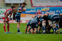 Saturday 10 May 2014<br /> Pictured: Lewis Jones puts the ball into the scrum<br /> Re: Scarlets v Blues Rabo Direct Pro 12 Rugby Union Match at Parc y Scarlets, Llanelli, Wales
