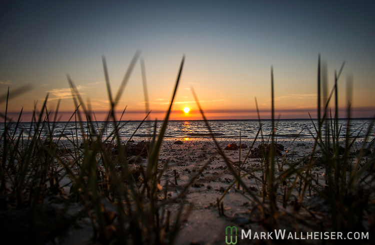 The sunsets through the sea grasses at Shell Point Beach in Wakulla County along the Forgotten Coast of the Florida panhandle.