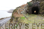 LINE: A view from one of the tunnels on the old railway line from Farranfore to Valentia, which closed 50 years ago this week.