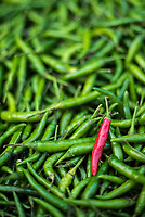 Green and red chillies in Hpa An Morning Market, Kayin State (Karen State), Myanmar (Burma)