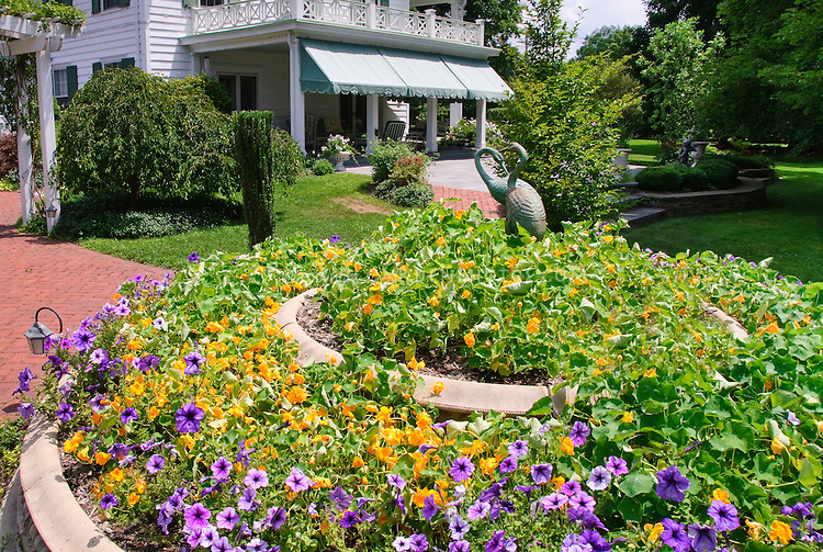 House nasturtiums petunias blue skies clouds sunny for Classic house with flower garden