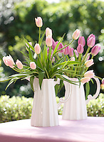 A pair of white ceramic jugs is filled with tulips of varying shades of pink
