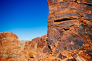Image Ref: CA521<br />