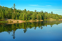 White pine-Hemlock-northern hardwoods Forest reflected in Ink Lake<br /> Near Alban<br /> Ontario<br /> Canada