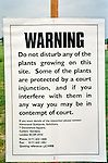 A sign erected by a farmer on the day that Anti GM protesters  destroy a field of test  GM rape seed, Watlington, Oxon