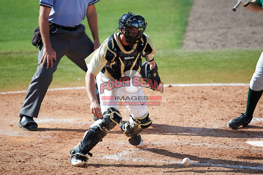 UCF Knights catcher Matt Diorio (14) checks the runner after blocking a pitch in the dirt during a game against the Siena Saints on February 21, 2016 at Jay Bergman Field in Orlando, Florida.  UCF defeated Siena 11-2.  (Mike Janes/Four Seam Images)