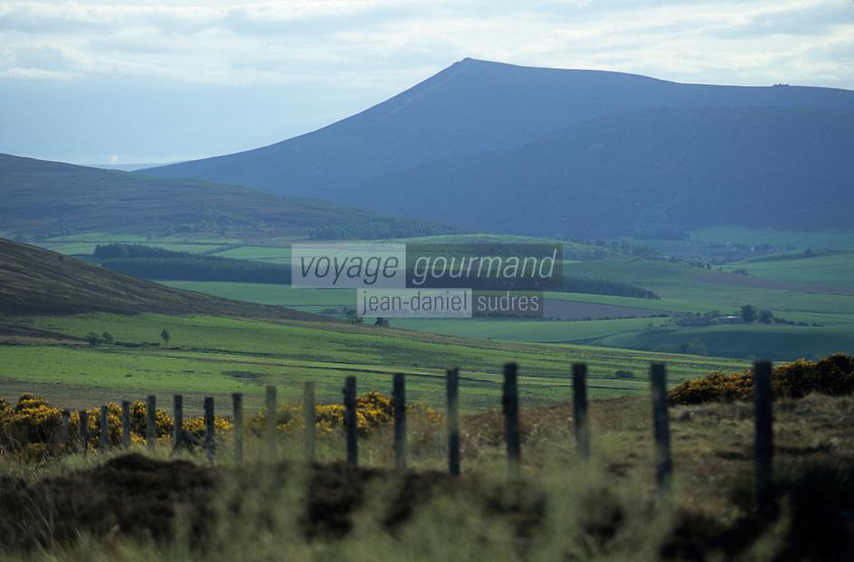 Europe/Grande-Bretagne/Ecosse/Moray : Paysage de landes du Moray le pays du malt whisky