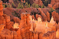 730750021  hoodoos with sunrise back lighting seen from sunrise point in bryce canyon national park in utah