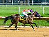 Madjikman winning at Delaware Park on 7/10/17