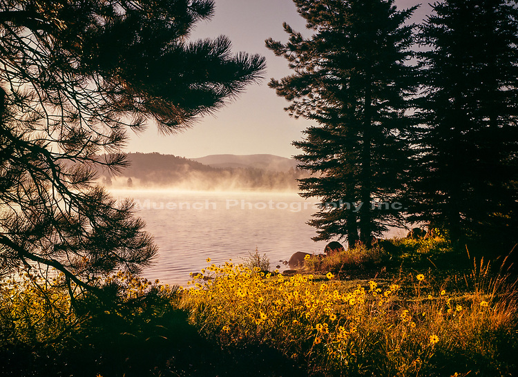 Big Lake,Mornng mist,White Mountains,Arizona