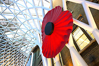 A giant fibreglass Red Poppy has been installed inside London's Kings Cross Station concourse, ahead of Remembrance Day. Novemeber 5th 2019<br /> <br /> Photo by Keith Mayhew