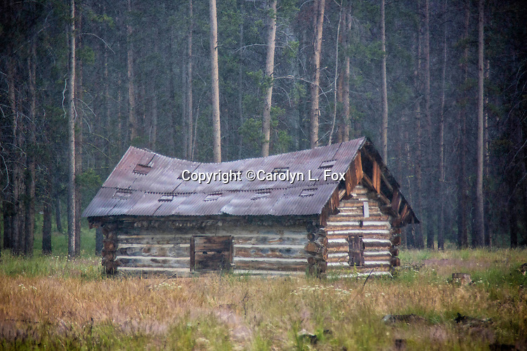 An old cabin stands in front of a forest in Montana.