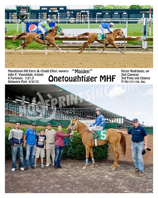 Onetoughtiger MHF winning at Delaware Park on 6/6/12