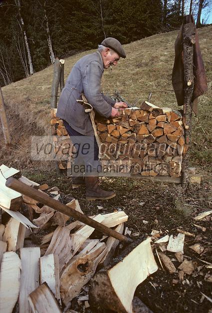 Europe/France/Auverne/63/Puy-de-Dôme/Parc Naturel Régiobnal du Livradois-Forez/Env. d'Ambert: Coupe du Bois [Non destiné à un usage publicitaire - Not intended for an advertising use]<br /> PHOTO D'ARCHIVES // ARCHIVAL IMAGES<br /> FRANCE 1980