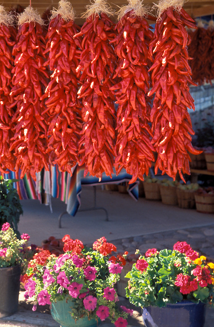 Red chili peppers are strung together into bundles and hung out to dry outside of adobe pueblos, New Mexico