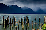 Old wooden pier pilings, Britania beach close to Squamish. North Vancouver, British Columbia, Canada.