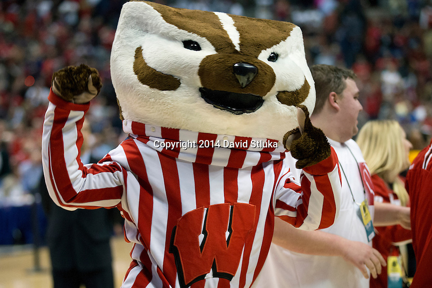 Wisconsin Badgers mascot Bucky Badger celebrate after the Western Regional Final NCAA college basketball tournament game against the Arizona Wildcats Saturday, March 29, 2014 in Anaheim, California. The Badgers won 64-63 (OT). (Photo by David Stluka)