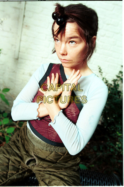 BJORK.Photo Session.Ref:Ian Jennings.half length off the shoulder red top flower print logo arms hands together crossed across chest green patchwork trousers unusual hair style bobbles.www.capitalpictures.com.sales@capitalpictures.com.©Capital Pictures...
