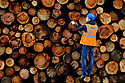 TO GO WITH STORY BY Arthur Beesley. DATE 8 FEB 2018. Ryan McDonagh looks over the latest batch of logs in the log yard of Balcas Timber Ltd,  Laragh, Ballinamallard, Enniskillen Co. Fermanagh, Northern Ireland. Photo/Paul McErlane