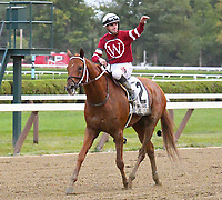 Gun Runner (no. 2), ridden by Florent Geroux and trained by Steven Asmussen, wins the 64th running of the grade 1 Woodward Stakes for three year olds and upward on September 02, 2017 at Saratoga Race Course in Saratoga Springs, New York. (Bob Mayberger/Eclipse Sportswire)