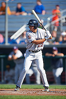 Mahoning Valley Scrappers shortstop Luke Wakamatsu (22) at bat during a game against the Auburn Doubledays on June 19, 2016 at Falcon Park in Auburn, New York.  Mahoning Valley defeated Auburn 14-3.  (Mike Janes/Four Seam Images)