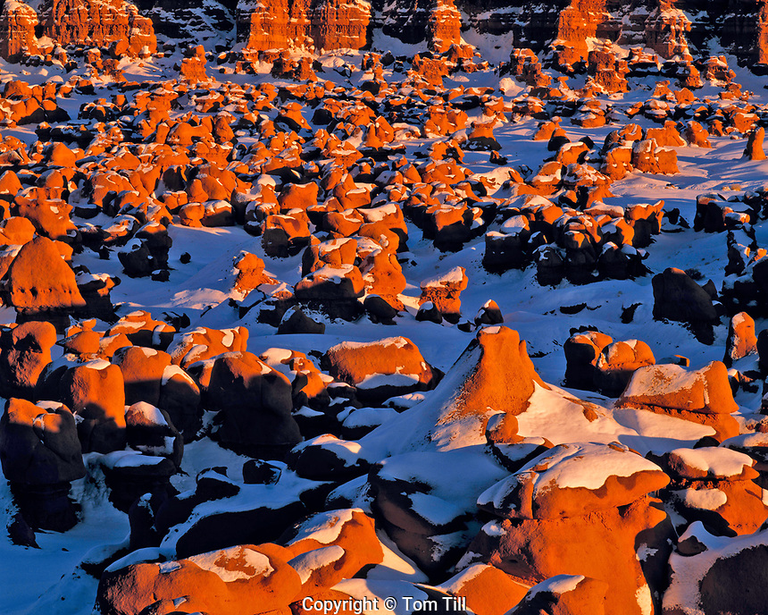 Snow on Goblins at Sunset, Goblin Valley State Park, Utah   Rock forms of Entrada sandstone
