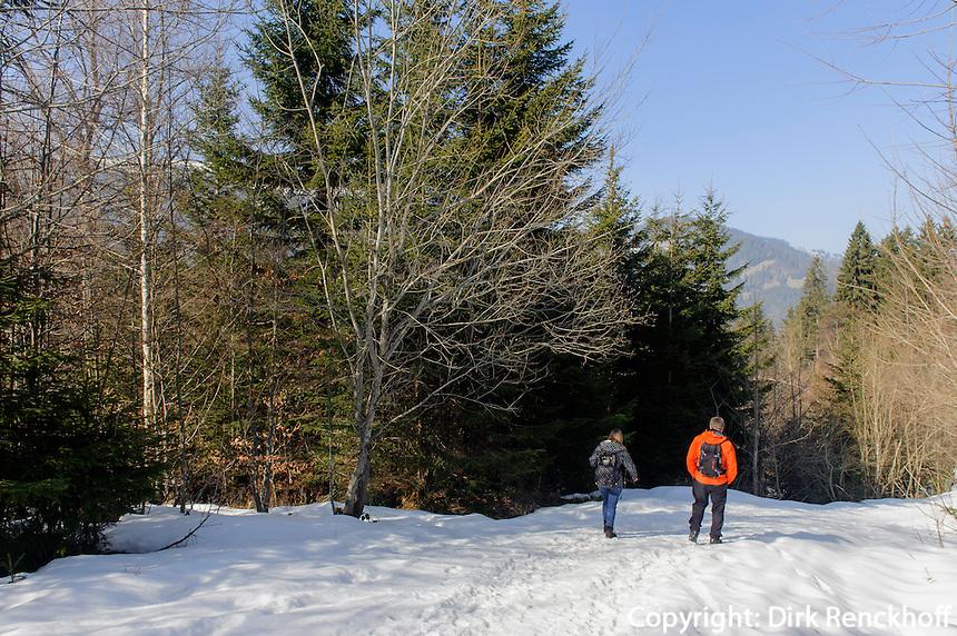 Wanderweg zur Alpe Bl&auml;sse bei Ofterschwang im Allg&auml;u, Bayern, Deutschland<br /> hiking trail to Alpe Bl&auml;sse near  Ofterschwang, Allg&auml;u, Bavaria, Germany