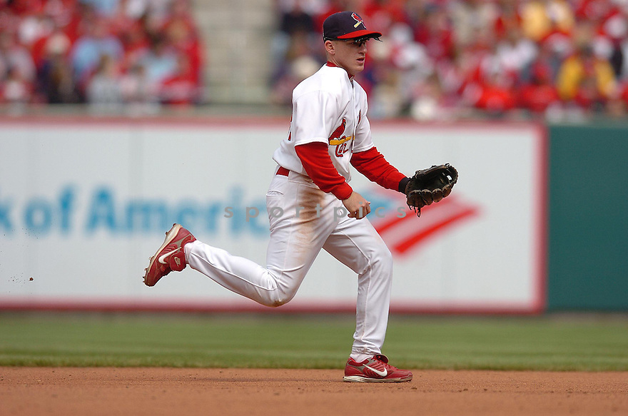 DAVID ECKSTEIN, of the St. Louis Cardinals, in action during the Cardinals game against the Milwaukee Brewers in St. Louis, Missouri on April 15, 2007...Cardinals win 10-2....CHRIS BERNACCHI/ SPORTPICS..