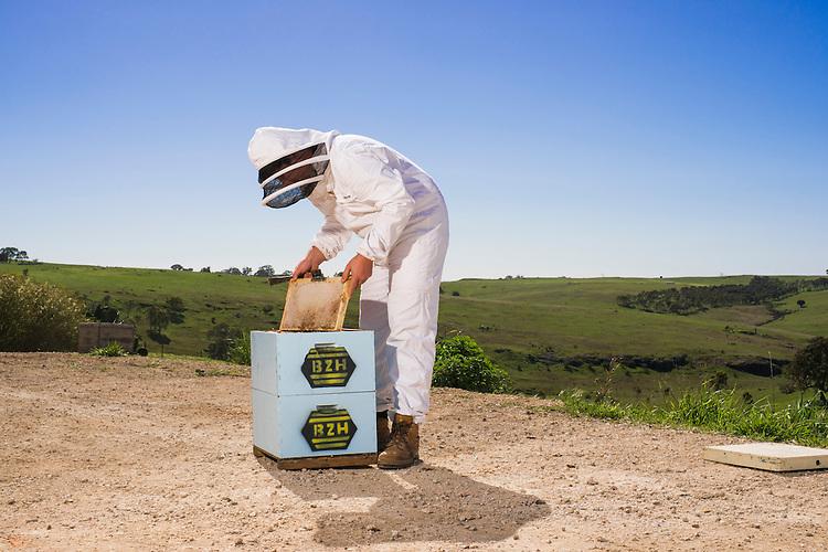 Buzz Honey - Annette Ferris – 8388 0274