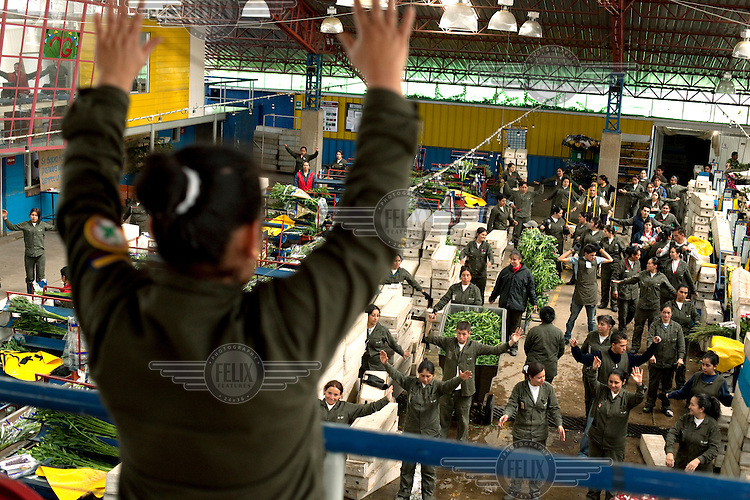 Claudia Pantoja, leads an exercise break for workers who prepare flowers to leave the plantation in the 'post-cosecha' or 'after-harvest' phase in an assembly line at MG Consultores, a flower plantation in Chia.