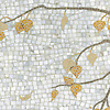 Name: Aspen<br />