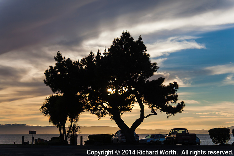 Before sunset, folks gather at the San Leandro Marina parking lot, preparing for the evening's show.