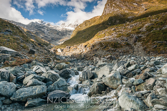 Unnamed creek near Ice Lake, Westland National Park, West Coast, New Zealand