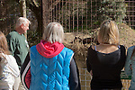 Viewing Black Leopard, Big Cat Rescue