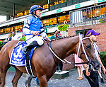 """Oct 06, 2019 : Wicked Whisper with Joel Rosario, wins the $400,000 Grade I Frizette Stakes, a """"Win and You're In""""  for two year old filles, at Belmont Park, in Elmont, NY, October 06, 2019. Sue Kawczynski_ESW_CSM,"""
