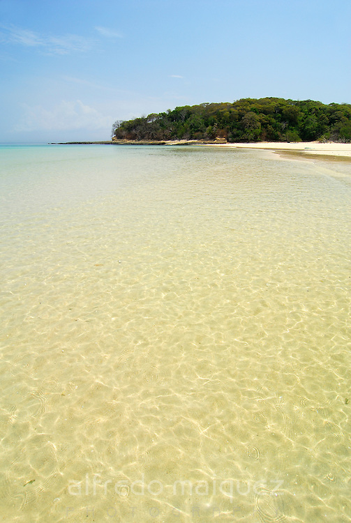Tropical beach with clear waters and forest in Chapera island. Las Perlas archipelago, Panama province, Panama, Central America.
