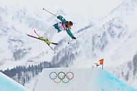 Freestyle Skiing - Slopestyle